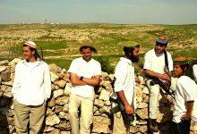 Photo of Settlers raze lands in the Jordan Valley