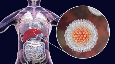 Photo of Nobel Prize for Medicine goes to Hepatitis C discovery