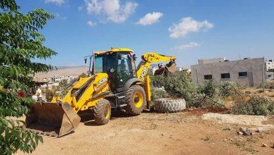 Photo of Large areas of olive trees bulldozed West of Salfit