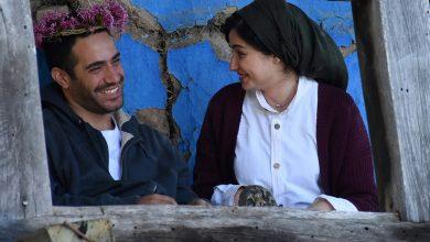 Photo of Palestine Cinema Days festival begins