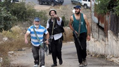 Photo of Settlers attack  Palestinian farmers West of Salfit
